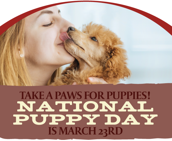 National puppy day graphic